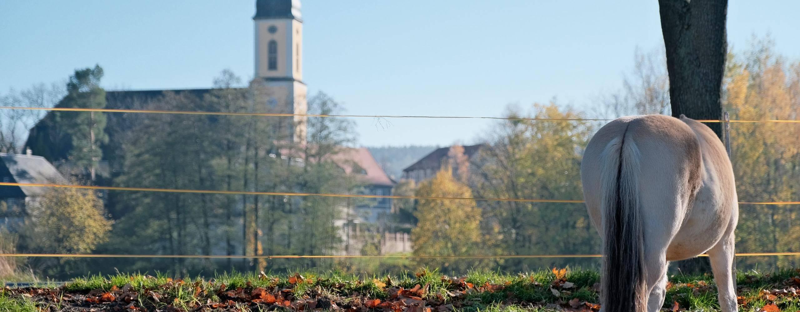 blick von nord aus der gemeinde c. hilse ©Blick auf Kirche Foto: Christian Hilse